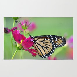 Monarch Butterfly Pollinating Deep Pink Cosmos Flower Rug