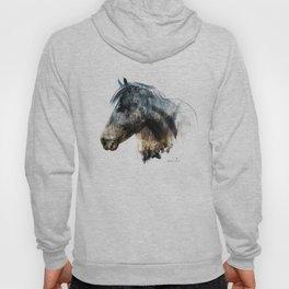 Horse (Into the wild) Hoody