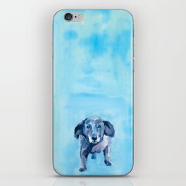 The Dachshund Strut iPhone Skin