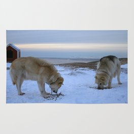 Ilulissat Greenland: The land of dog sleds and Midnight Sun Rug