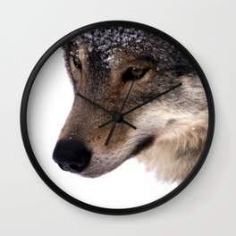 Wolf In the Snow Wall Clock