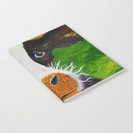 Naomi Notebook