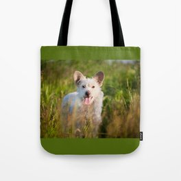 Single white stray tyke dog at the meadow Tote Bag