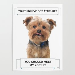 You Should Meet My Yorkie   Dogs   Nadia Bonello   Canada Poster