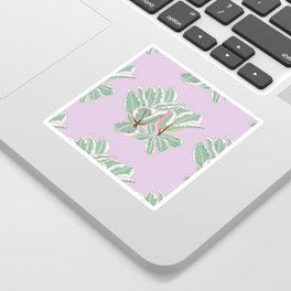 Rubber Tree Variegated Sticker