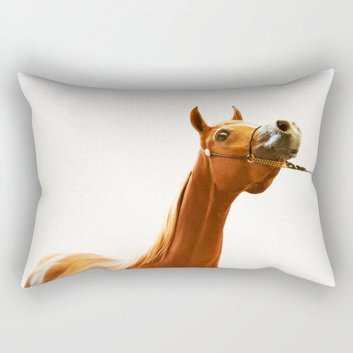 horse collection. arabian red Rectangular Pillow