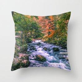 Mountain river Throw Pillow