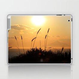 Evening Breeze Laptop & iPad Skin