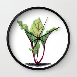 Red beet plant pencil drawn Wall Clock