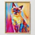 Siamese Cat by shrenk