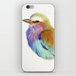 Colorful bird iPhone Skin