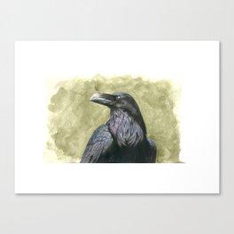 Proud Raven - Watercolor Canvas Print