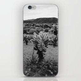Cholla Cactus Garden V iPhone Skin