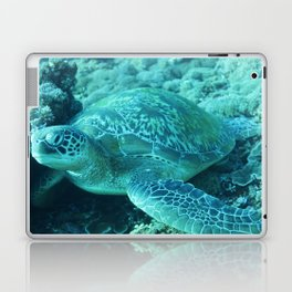 Smooth green turtle Laptop & iPad Skin