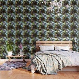 Coconut Palm Wallpaper
