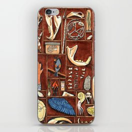 Curious Cabinet iPhone Skin