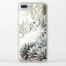 The Succulent Room at Longwood Clear iPhone Case