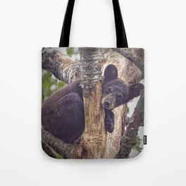 Photo of a Black Bear Cub in Northern Minnesota Tote Bag