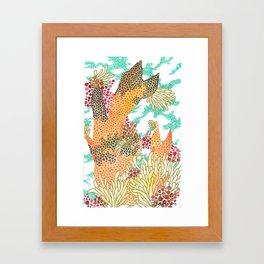 Coy Reef Framed Art Print