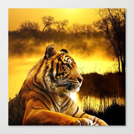 Tiger and Sunset Canvas Print