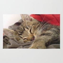 Cutest Cat Rug