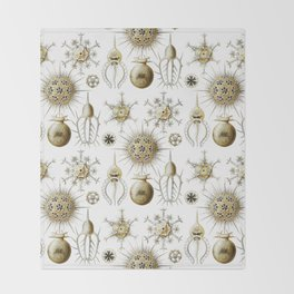 Ernst Haeckel - Phaeodaria Throw Blanket