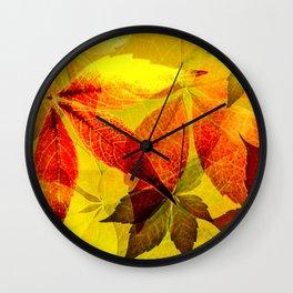 Virginia Creeper autumn colors Wall Clock