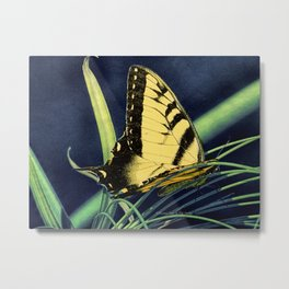 Yellow Tiger Swallowtail Butterfly A125 Metal Print