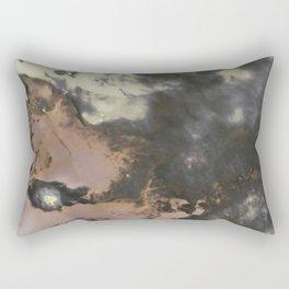 007 Rectangular Pillow