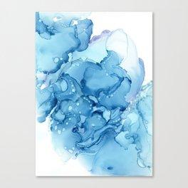 Stonewashed Canvas Print