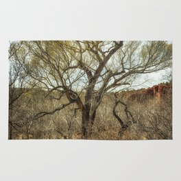 Cottonwood by Oak Creek Rug