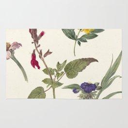 Pieter Ernst Hendrik Praetorius - Studies of wild flowers (1837) Rug