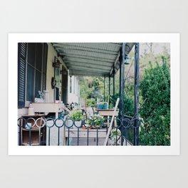 Back Yard  Art Print