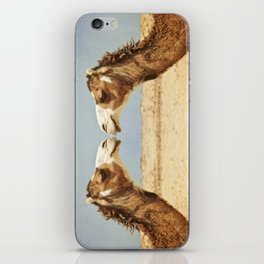 Love and Affection iPhone Skin
