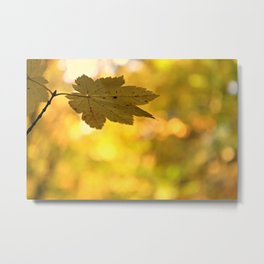 Twinkling Leaf Lights Metal Print