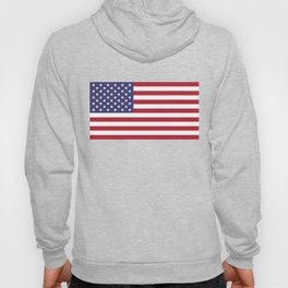 National flag of USA - Authentic G-spec 10:19 scale & color Hoody