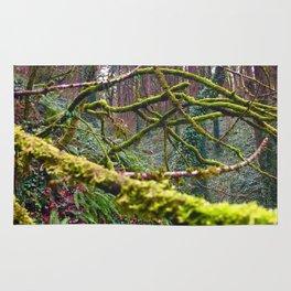Green Burst Rug