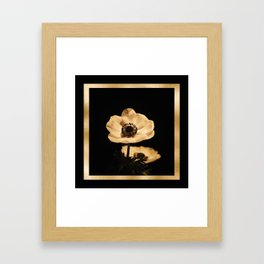 Anemone Flowers, Black with Golden Frame, Floral Nature Photography Framed Art Print