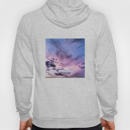 fly up to the blue pink sky Hoody