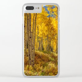 Autumn Aspen Forest Aspen Colorado Clear iPhone Case