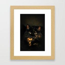 Tortoiseshell Cat Framed Art Print