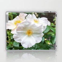 Camellia Bloom Flower Laptop & iPad Skin