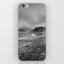 Colibita iPhone Skin