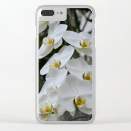 Immaculate Clear iPhone Case