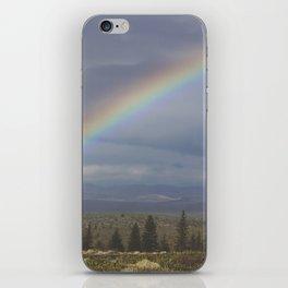Rainbow Half iPhone Skin