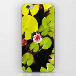 Dreaming Lotus iPhone Skin