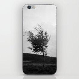 Dartmoor Tree iPhone Skin