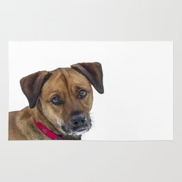 Puppy Dog Eyes Rug