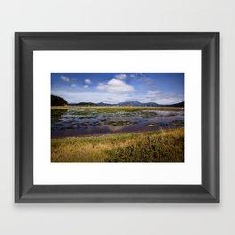 Marsh, Lopez Island, WA Framed Art Print