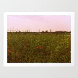 Prairie Winds  Art Print